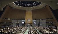 联合国制定保护妇女、儿童及未成年人健康的新战略