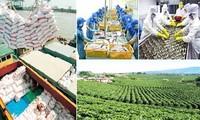 越南推动向新加坡出口农产品