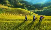 越南西北地区旅游推介与投资促进会举行