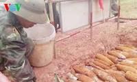 广治省开展志愿者活动协助爆炸物受害者