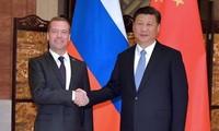 习近平会见俄总理梅德韦杰夫