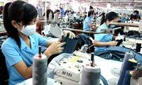 越南企业廉政状况调查结果发布