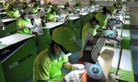 2016至2020年阶段越南加强向中小型企业提供政策扶持