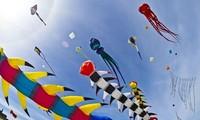 """""""和平之舞""""2016年国际风筝节将在巴地头顿省举行"""