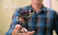 美国研制成功首台跳跃机器人
