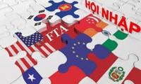 提高并肯定越南在不变世界中的地位和立足点