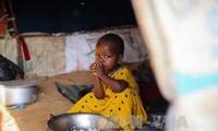联合国呼吁防止也门、索马里、南苏丹及尼日利亚饥荒