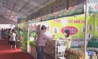 胡志明市对接各种促销形式刺激消费
