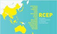 各国力争按计划完成RCEP谈判