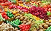 加强结构重组发展现代和可持续的农业