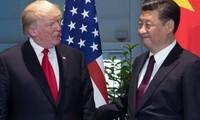 中美贸易关系有新进展