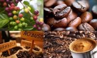 提高越南咖啡价值