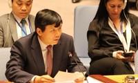 """越南代表东盟承诺为""""保护武装冲突中的平民问题""""贡献力量"""