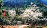 在音乐中游览木州    体验人与大自然之间的交融