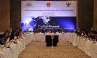 """越南希望""""巴厘进程""""进一步发挥推动对接和地区与全球合作机制的作用"""