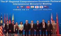 越南出席在中国举行的RCEP第八次部长级会议