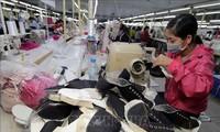 越南-以色列进出口商品结构具有互补性