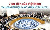 越南正式担任2020至2021年任期联合国安理会非常任理事国
