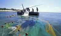 采取多项措施  发展海产捕捞业