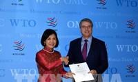 越南承诺继续与世贸组织紧密配合