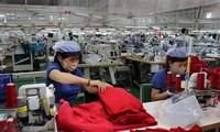 欧洲企业看好越南应对疫情的措施