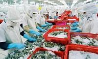 越南水产业在新冠肺炎疫情后恢复生产