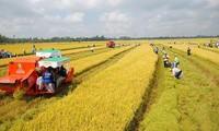 国会代表赞同免除耕地使用税