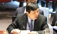 越南主持召开联合国安理会有关国际法院工作组的会议