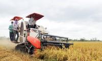 越南国会一致同意延长耕地使用税免除政策实施期限