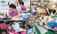 自8月1日起,越南一些拳头产品将从越欧自贸协定中受益