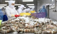 越南674家水产企业获得出口中国台湾市场的许可证