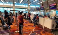      将241名在新加坡的越南公民接回国