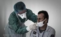 全世界新冠肺炎确诊病例近2500万例
