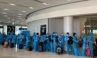 将在日本的越南公民接回国