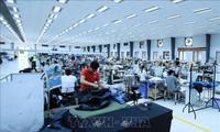 以色列媒体高度评价越南对外政策及经济成就