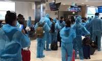 将近350名在澳大利亚和新西兰越南公民接回国