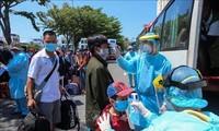 恢复岘港市与各地往返客运活动