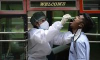 世界新冠肺炎确诊病例超过2900万例