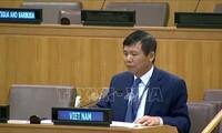越南强调东盟支持不扩散杀伤性武器和不搞军备竞赛