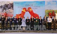 高平省与TH集团举行奶牛养殖和牛奶加工项目动工仪式