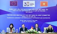 越南与欧盟合作克服疫情后果