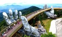 促进旅游——航空对接 面向恢复岘港旅游