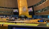 越南成功对接东盟与联合国安理会