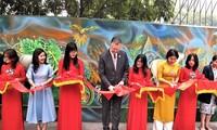 河内市100平米环保壁画项目竣工验收