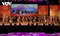 嘉莱省保护锣钲文化空间