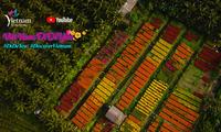 《越南——文化和美食旅游目的地》视频在优兔发布