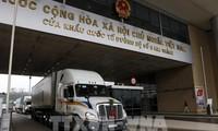 越南通过老街省口岸向中国市场出口一万四千多吨火龙果
