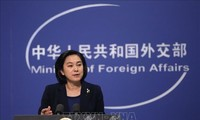 中国反对西方政客对新冠病毒溯源调查结果做出的谴责