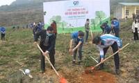 越南胡志明共青团启动2021年青年月及植树节
