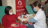 越南中央血液学和输血医学院继续呼吁民众献血
